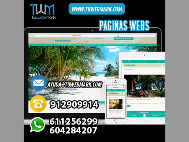 - TU PROFESIONAL POSICIONAMIENTO WEB -