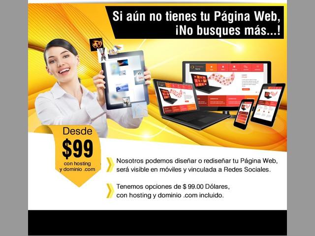 Páginas Web, Sistemas, Soporte, Hosting, Dominios, Licencias