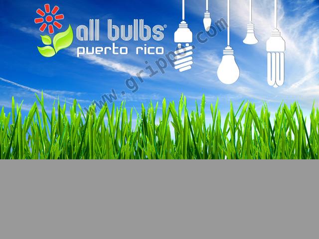 AllBulbsPR.com