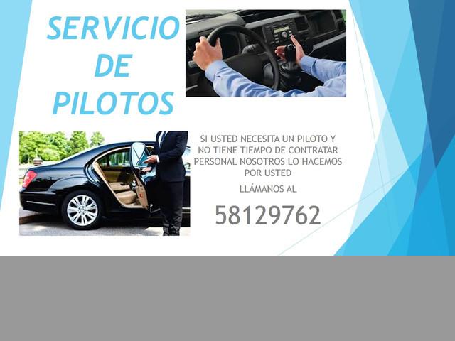 SERVICIO DE PILOTOS PARA CASAS O EMPRESAS