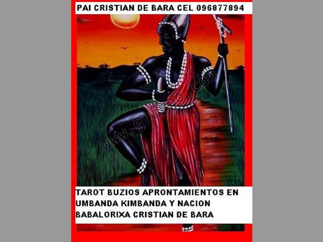 TAROT BUZIOS VIDENTES BABALAWOS SANTEROS BABALOCHAS