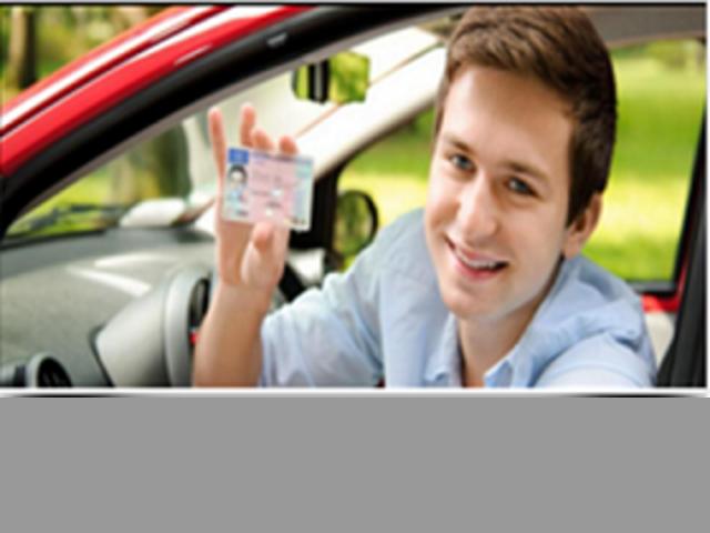 Vendo Asesoria en trámites de vehículos