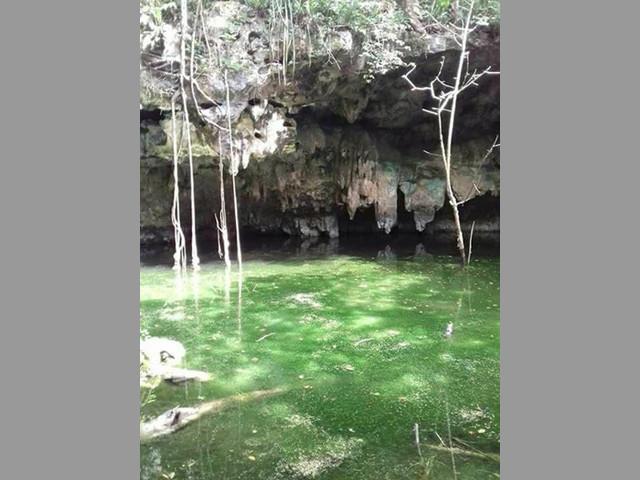 Rancho para Eco-turismo en Tizimin, Yucatán, Mexico.
