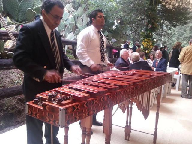 Marimba en México