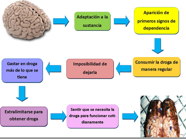 INTERNAMIENTO REHABILITACION DROGAS TRATAMIENTOS PUYO