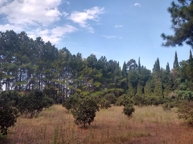 Terreno En Nogoyá . 3500 m²