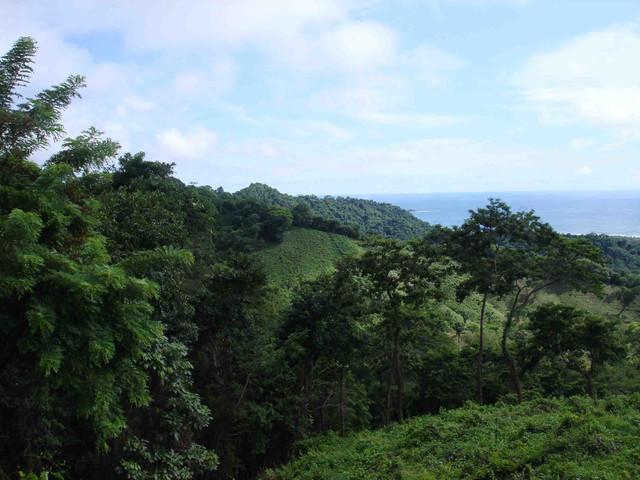 Propiedad Playa Coyote Costa Rica