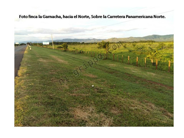 Venta Finca Ganadera Agricola Nicaragua