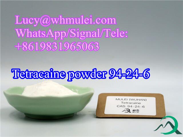 Tetracaine Powder CAS 94-24-6 China top supplier