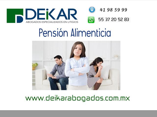 Pensión Alimenticia DF y Estado de México
